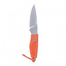 Acta Non Verba - ANVP100-019 - P100 Plain Orange
